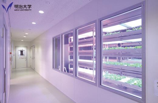生田キャンパスの温室
